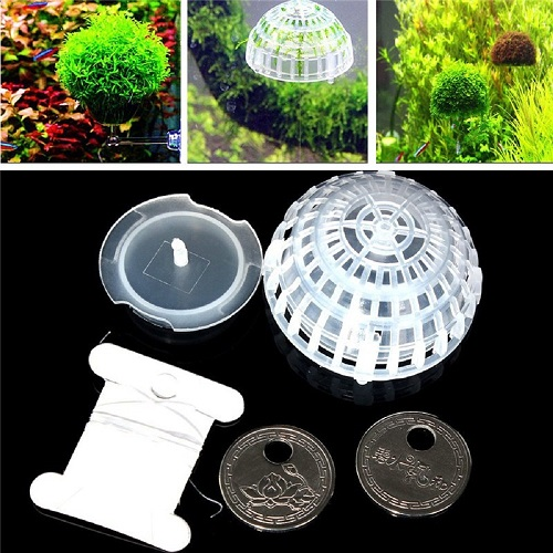 Moss Ball Plastic Holder